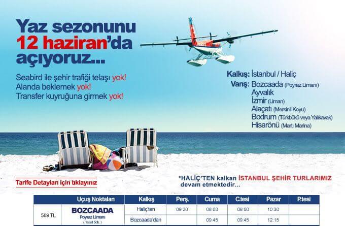 bozcaada_fly_sea_bird