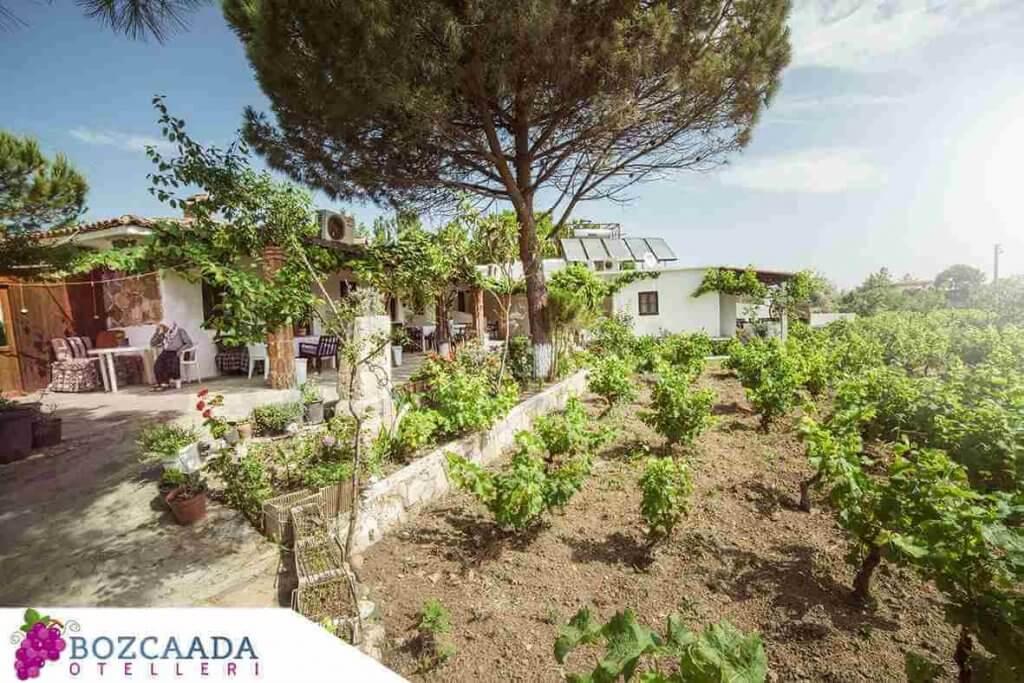 Bozcaada Otel Ve Pansiyon Fiyatları
